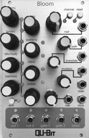 画像4: Qu-Bit Electronix  BLOOM フラクタル シーケンサー
