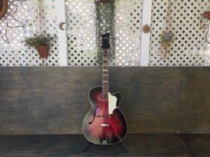 画像2: Hohner France Holiday Jazz Guitar Vintage / Made in Germany c.1961(?) レアビンテージ アーチトップ アコースティック